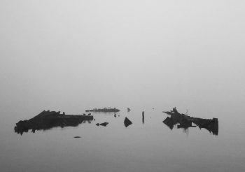 PICNIC ELECTROMAGNÉTICO: Crónica en proceso, la niebla un nudo, algo por ahí, de Lourdes Silva