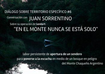 DIALOGO #6: EN EL MONTE NUNCA SE ESTÁ SOLO DE JUAN SORRENTINO (AR) | LABOR DE APERTURA DE UN SENDERO
