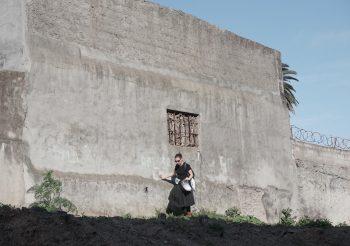 CICLO EXPEDICIONES EN TERRITORIO ESPECÍFICO – TERCERA EXPEDICIÓN 'UN TREN A CONTRAMARCHA' – 15 DE OCTUBRE 14:30HRS.